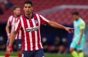 Daniel Enriquez: Luis Suárez wie, że napisze historię w Atlético